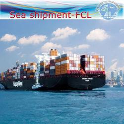 """Speditionen / Seefracht / Meer Versand-Service nach Jakarta (20 """"40"""")"""