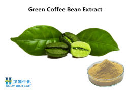 체중 감소를 위한 순수한 유기 녹색 커피 콩 추출 분말