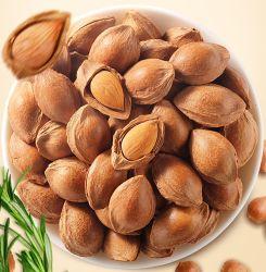 Buon prezzo del commercio all'ingrosso superiore della fabbrica dei noccioli di albicocca amari organici grezzi delle mandorle amare e dolci da vendere