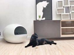 Gatos de Verificación automática inteligente Productos Más Vendidos Cat wc
