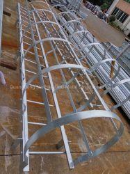 Escalera de acero galvanizado en caliente de la escalera de gato de la escalera de la jaula