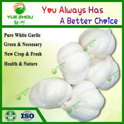 het Verse Knoflook van 4.5cm met Landbouw & Het Nieuwe Zuivere Witte Knoflook van het Voedingsgewas van China