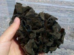 Extracto de hongo negro de polvo de hongo negro