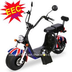 Cee a approuvé les scooters électriques moto avec retirez les piles pour adulte