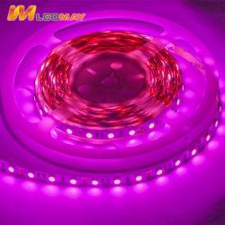 Rose Bar lumineux pour LED d'éclairage LED de lumière LED STRIP Light