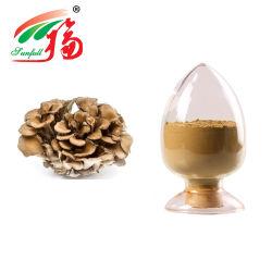 Poudre de haute qualité Grifola frondosa Maitake Mushroom (Fr.) Sf gris
