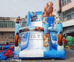 Grande trasparenza gonfiabile del PVC personalizzata fabbrica, castello della sosta di divertimento per i capretti