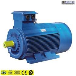 Motore elettrico a tre fasi di CA di 22 chilowatt per il campo industriale Y2-200L2-6