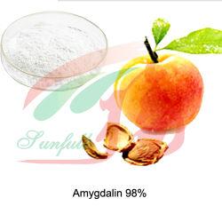 Абрикос семян, который обусловлен наличием амигдалина Laetrile витамина B17 Выдержка