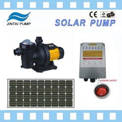 Jubelt Solar2HP swimmingpool-Pumpe mit Motor Gleichstrom-Brushles zu