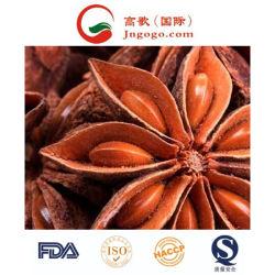중국에서 새로운 작물 스타 아니스