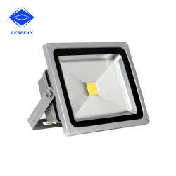 Rectangle IP66 50W Couleur Unique/Projecteur à LED RVB100W Réflecteur de lumière LED 200W l'Extérieur Projecteurs à LED de couleur