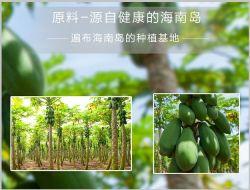 De grado alimenticio natural Spray Dried Papaya extracto en polvo