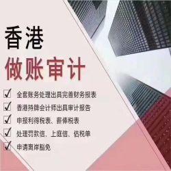 香港の会社はアカウント監査および年次レビューをする