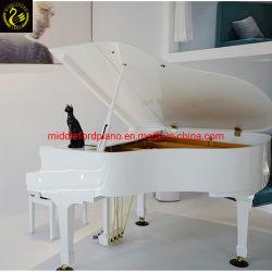 Middleford (GP-152 W) Bianco 152 Grand piano con banco regolabile gratuito