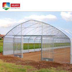 8X50m الزراعة الزراعية نفق بلاستيك بالنفاجين بالنفق النباتي مع الأفضل السعر