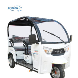 un triciclo elettrico dei tre carrai del motore 800W per il passeggero