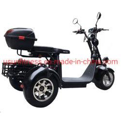 De vette Band Elektrische ATV Met drie wielen 2 Zetels 1500 W Motor gaat Karts voor Volwassene