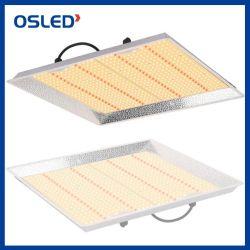 Il LED si sviluppa chiaro, piante idroponiche di spettro di serie LED di 100W 150W 200W 300W 450W della crescente della lampada dell'indicatore luminoso serra piena del semenzale, comitati multipli raccordabili