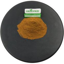 천연 유기농 허브 메디신 성분 2.5% UV Cynarin Inuline 농축 파우더 예루살렘 밀크 티슬/아티초크 루트 리프 무게 감소를 위한 추출