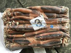 Intero calamaro rotondo Frozen di Illex da vendere