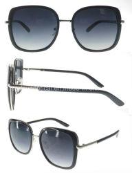 Cheap Price (SP692020)를 가진 형식 Sunglasses Square Shape