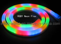 Rgyb LED Neon Flex for Decoration/ Holday Lighting