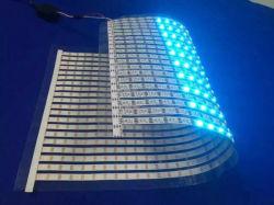 Matriz flexível do diodo emissor de luz de Digitas RGB Ws2812b 16*16