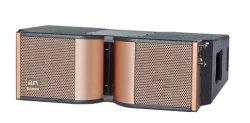 Dual 8 pouce corne enceinte de line array DJ professionnel (Q508)