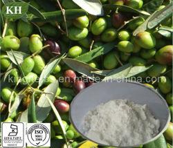 Натуральным глянцевая Privet извлечения Oleanolic кислота 60%, 98%