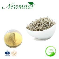 Chá branco em pó instantâneo natural Extrato de Chá puro
