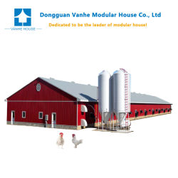 Vorfabriziertes Gebäude galvanisierte die Stahlkonstruktion-Landwirtschaft verschüttete Huhn-Geflügel-Haus
