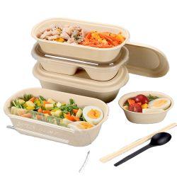 Embalagens para alimentos de celulose descartáveis levar lanche de bagaço de cana biodegradável
