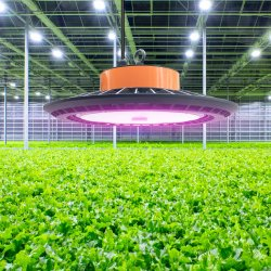 Super мощность 250 Вт Светодиодные лампы рост растений для поощрения