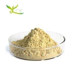 Extrait de soja non OGM isoflavone de soja en poudre 40 %