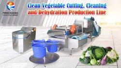 Automatisches Gemüse Xwa-1306, das waschenden entwässernproduktionszweig schneidet
