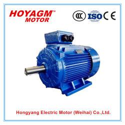 Ибо2-160m2-15квт Ye2 Series трехфазного асинхронного электродвигателя переменного тока