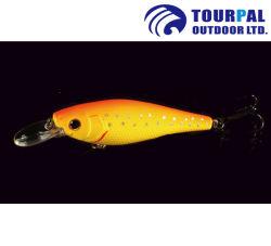 بيئيّ [أبس] [بلستيك متريل] صيد سمك [مينّوو] [لورس] لأنّ بحر صيد سمك وبحيرة صيد سمك