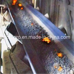 Tejido sólido/PVC resistente al fuego Pvg cinta transportadora