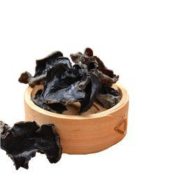 Fabricante Proveedor Hongos Negros Secos Orgánicos