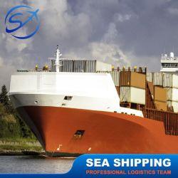 خدمات النقل والإمداد في البحر في المحيط Friight Forwarder إلى سنغافورة/ماليزيا/تايلاند/إندونيسيا/الفلبين/فيتنام