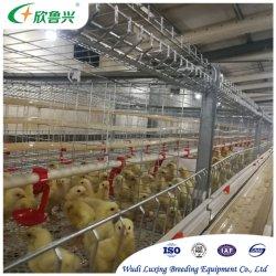جديد النوع 4 طبقات التلقائي طفل الدجاج برودر اليوم القديم Pullet Chick Cage