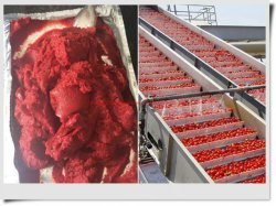 36-38% 220L 무균 부대 스틸 드럼에 있는 토마토 페이스트