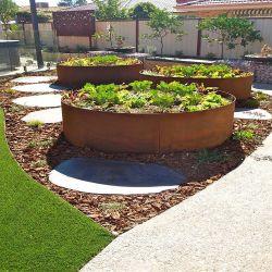 حافة حديقة كورتن للصلب/الزهرة والعشب
