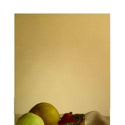 Couleur Noir Titane Rose Rose Gold 304 Plaque en acier inoxydable pour le spectacle