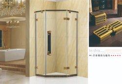 Un design moderne salle de douche SS304 en provenance de Chine (OT9853)
