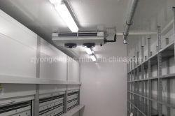 Congelatore industriale approvato Ce del magazzino per le frutta e verdure e l'altro alimento con la buona prestazione