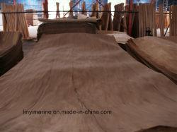 De in het groot Uitstekende kwaliteit van het Vernisje van het Berkehout