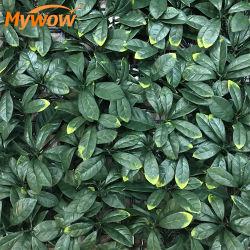 xiamenchangketongmaoyi Plantes Plantes Artificielles Cuisine D/écoration Plantes Face Int/érieure Petit en Plastique Plantes Synth/étiques Bureau D/écor Plantes artificielles Random,1pc
