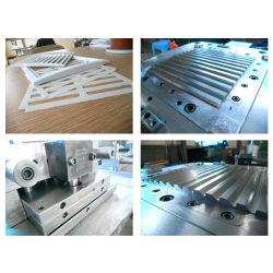 Modanatura di plastica della muffa della muffa di plastica di plastica dello stampaggio ad iniezione